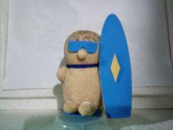 Surfista Surfistinha ecológico